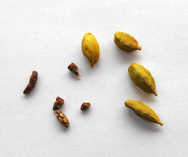 Cardamom pods and their seeds on a white paper - Goat Cheese Salad