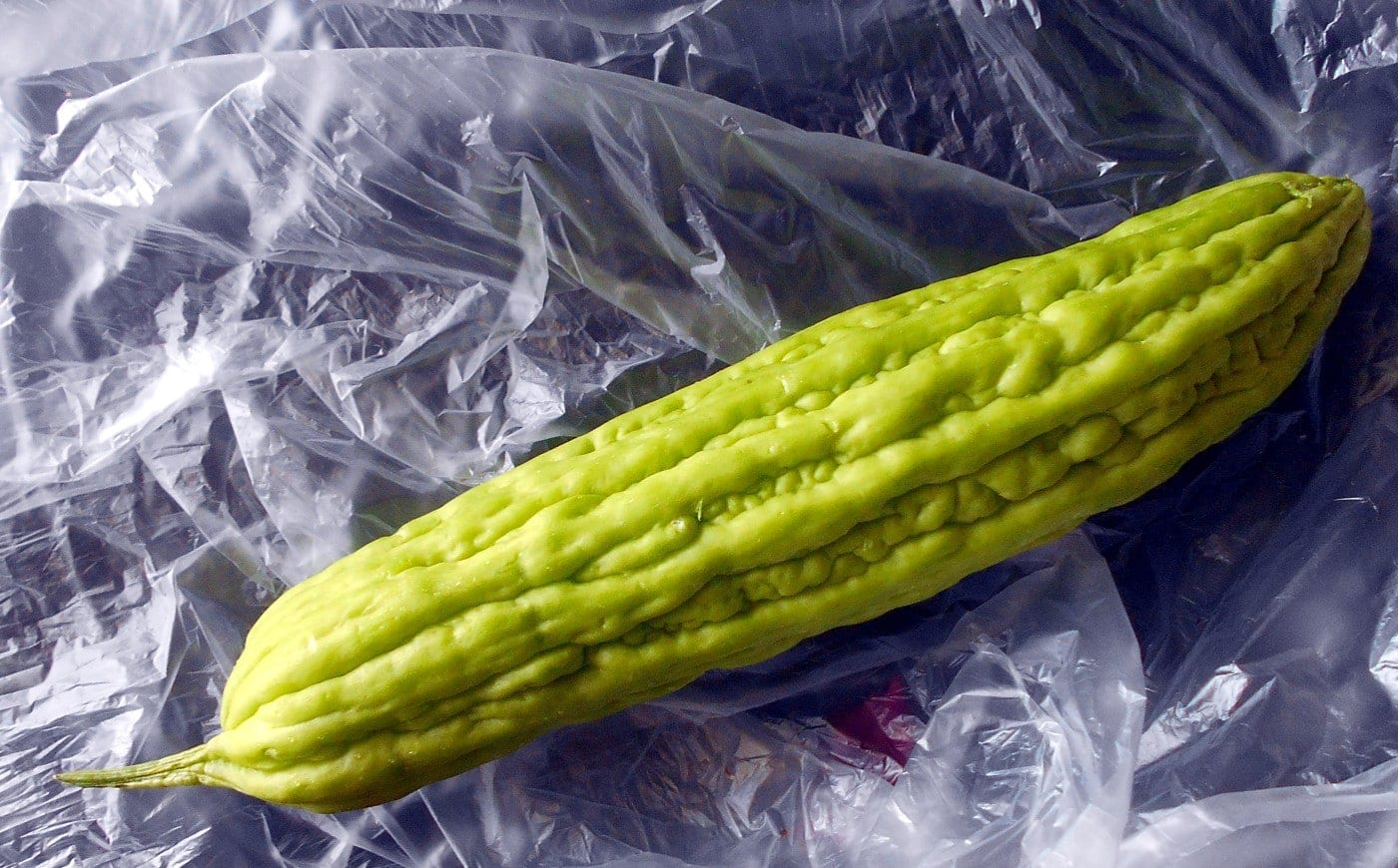 Overhead view of a whole chinese bitter gourd on a plastic bag - Bow-tie Stir Fry