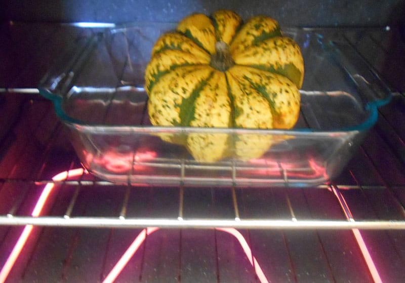 Carnival Squash in a clear square casserole plate placed in a preheated oven
