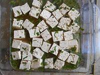 tofu-marinate