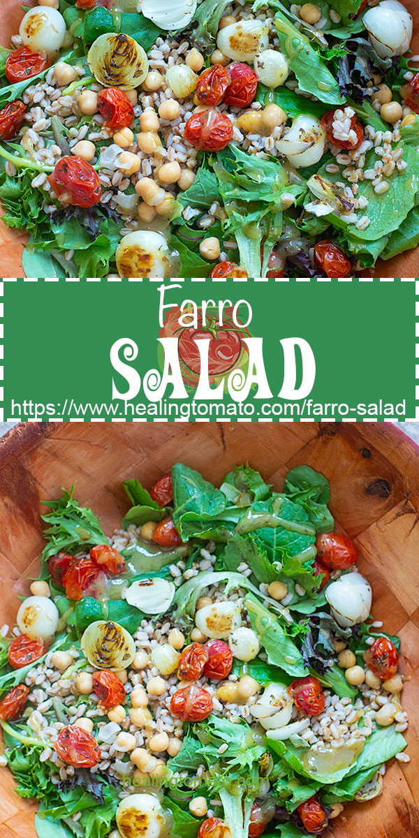 Healthy Farro salad recipe, Italian Farro Salad, Vegan Farro salad recipe, farro salad with kale, farro salad with chick peas, spring farro salad, warm farro salad, Farro salad with a simple dijon mustard #farro #vegan #veganrecipes #farrosalad #kalesalad #chickpearecipes #healthysalad #healthylunch #lightlunch #healingtomato