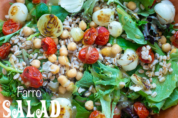 Closeup view of farro salad made with grilled pearl onions and grilled cherry tomatoes. chickpeas and baby kale also visible