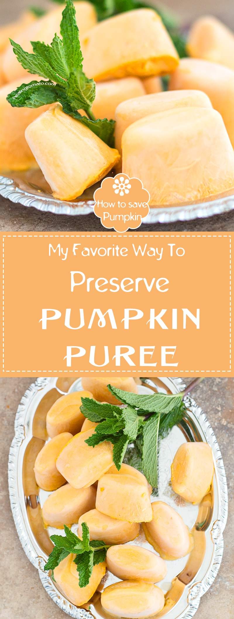 What to do with leftover pumpkin puree? Canning pumpkin puree can be a hassle, so, I have 5 very simple steps of preserving pumpkin puree at home. Think ice cube tray! Use it year-round #diy #preserve #pumpkin #pumpkinpuree #leftover https://www.healingtomato.com/preserve-pumpkin-puree/