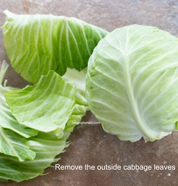 Outside leaves of cabbage removed - Cabbage Curry
