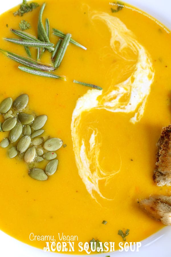 Closeup view of roasted acorn squash soup in a white soup bowl with garnish and a streak of coconut milk