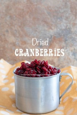 front view cranberries in an aluminium cup