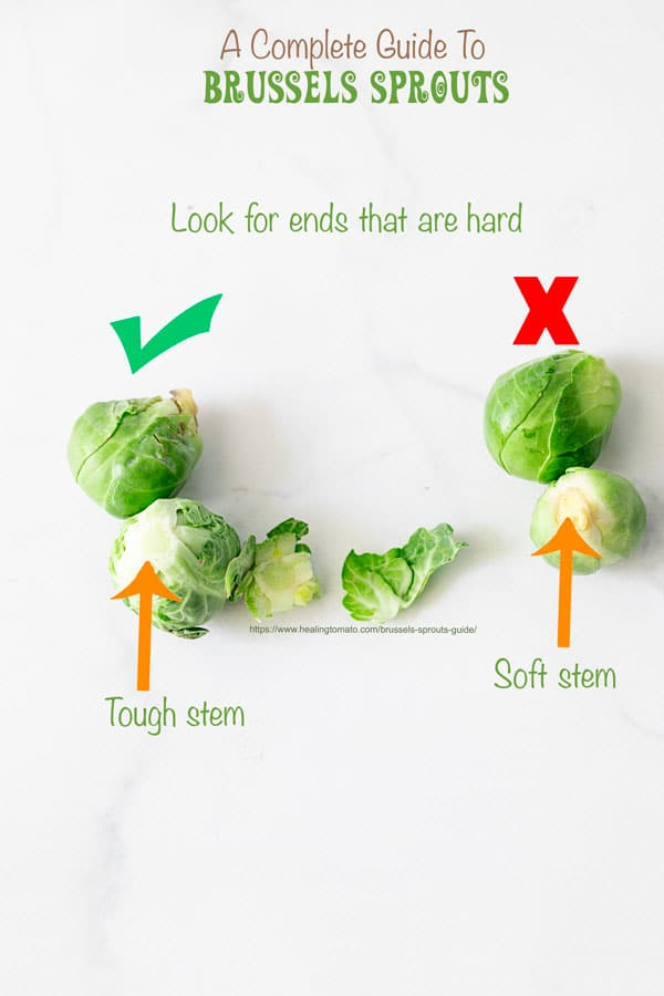 A check mark next on top of a Brussel sprout with a tough end and an X on top of a large Brussels sprout with a soft end