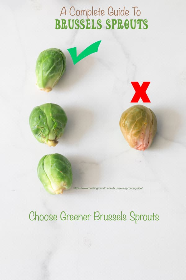 Check mark above 3 dark green brussels sprouts and a red x above a light green brusseels sprout