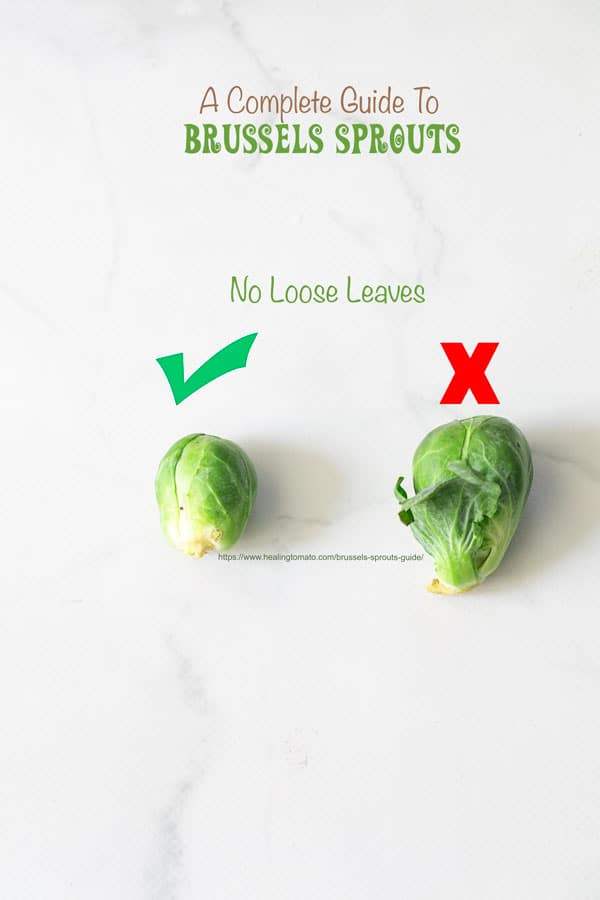 A check mark next on top of a Brussel sprout with no loose leaves and an X on top of a large Brussels sprout with a loose leaves